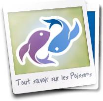 Le signe du Poissons: portrait et profil astrologique